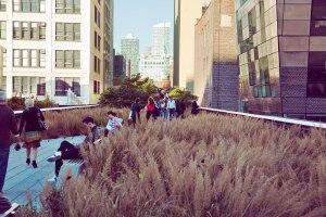 Highline11